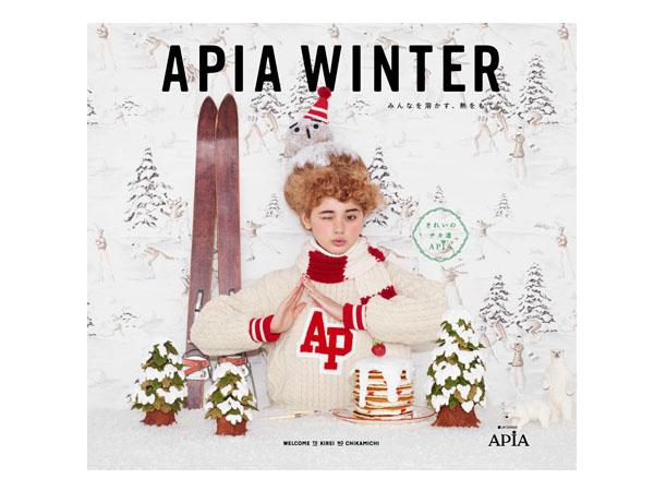 apia2013-W04
